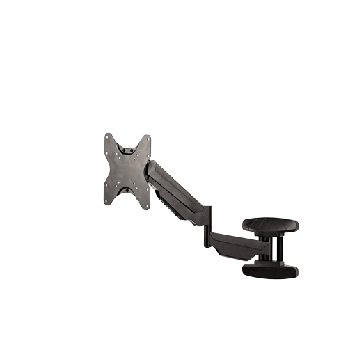 Fellowes - arm for monitor - wall mounting