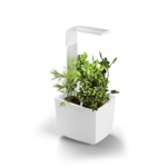 Tregren  Kitchen Garden, T3, White, LED, 193x175x440 mm, 6 seed pods pc(s), Wi-Fi controlled, Smartphone remote support