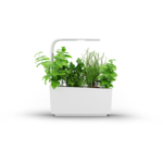 Tregren  Kitchen Garden, T6, White, LED,  345x175x440 mm, 12 seed pods pc(s), Wi-Fi controlled, Smartphone remote support