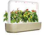 Click & Grow Smart Garden 9, beige