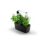 Tregren  Kitchen Garden, T6, Black, LED,  345x175x440 mm, 12 seed pods pc(s), Wi-Fi controlled, Smartphone remote support